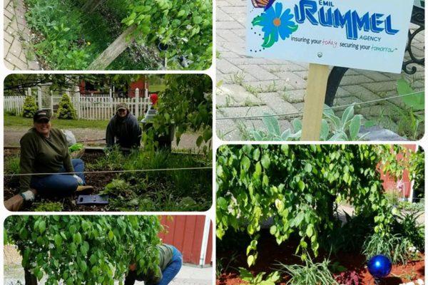 Saginaw Children's Zoo Garden Clean up
