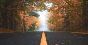 Header-Road-in-Fall